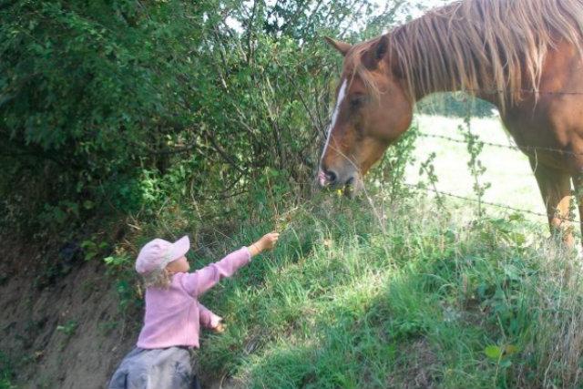 fillette & cheval